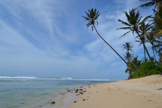 Beach Inns: private beach