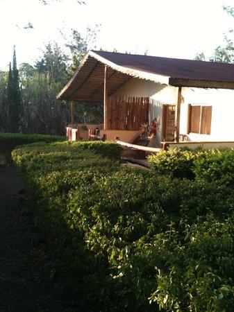 Meru View Lodge: cottage