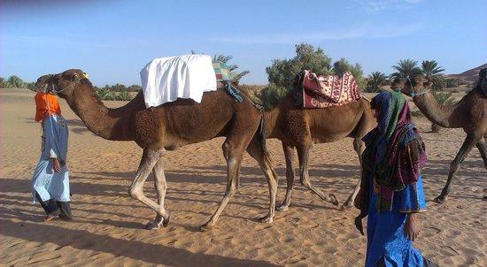 Hotel Ksar Merzouga: Excursión dromedarios