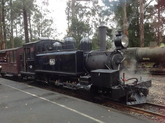 พัฟฟิ่งบิลลี่เรลเวย์: steam train at Menzies Creek Station