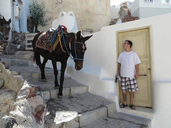 Art Maisons Luxury Santorini Hotels Aspaki & Oia Castle : Front door - Eros Suite