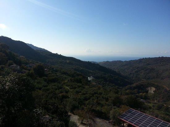Agriturismo Canalicchio: panorama