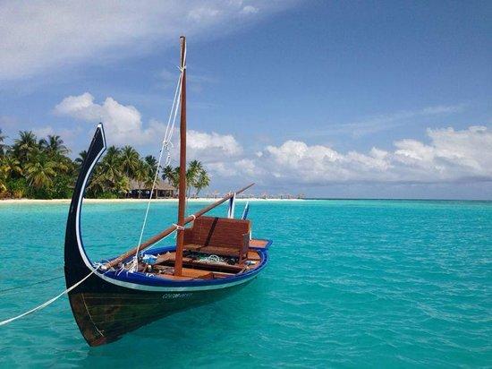 Veligandu Island Resort & Spa: boat