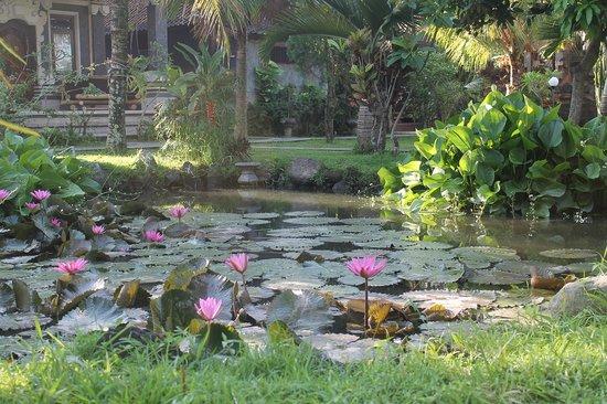 Swan Inn : Un jardin de rêve à vos pieds