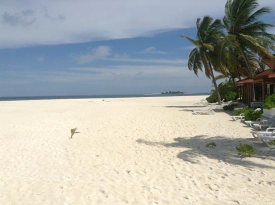 Diamonds Thudufushi : perfect view