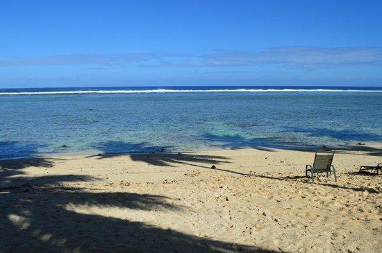 Rarotonga Backpackers: The hostel beach with palm trees - paradise!