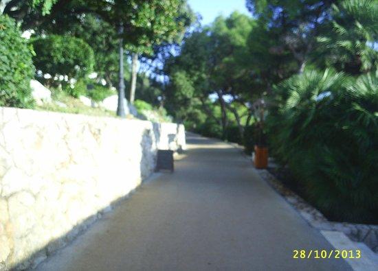 Ariston Hotel : Coastal path running through complex