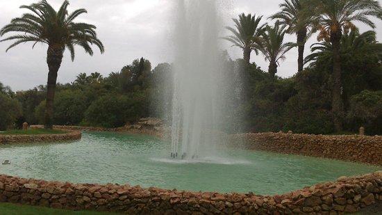 Vila Vita Parc Resort & Spa: вид