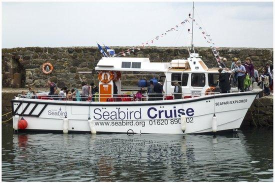 Scottish Seabird Centre: Seabird Cruise