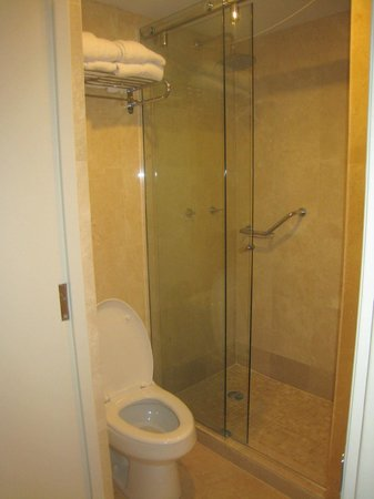 The Mill Resort & Suites Aruba: shower