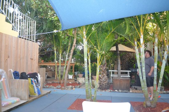 Ocean Inn: This is a picture of the courtyard, tons of trees and a hammock and chairs!