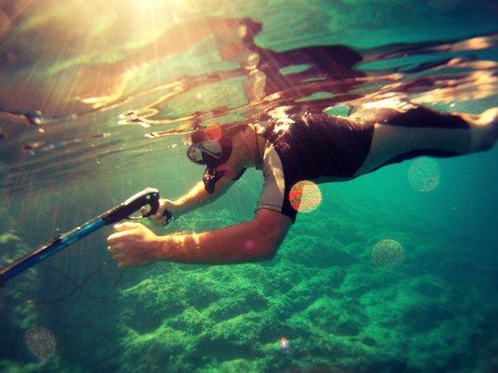 Adriatiq Resort Fontana: fond sous marins magnifique