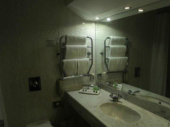 Clyde Court Hotel : Bathroom
