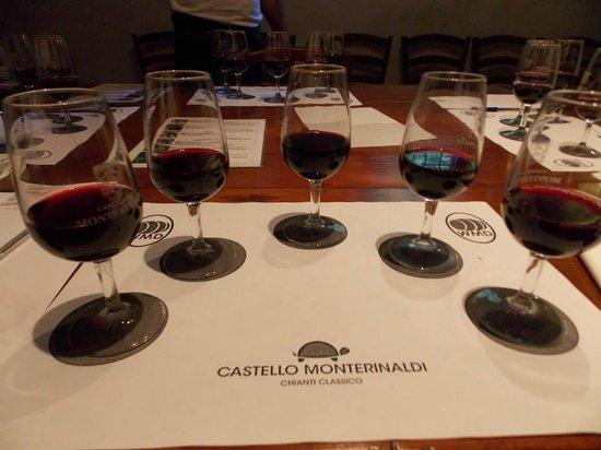 Castello di Monterinaldi: The 5 Different Types of Grapes
