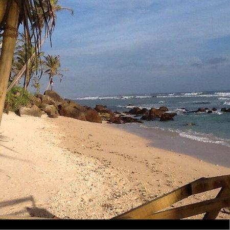 Beach Inns: Beech inns