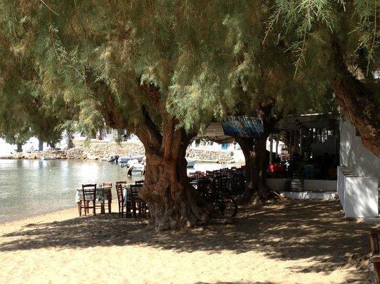 Vathi Beach: La spiaggia