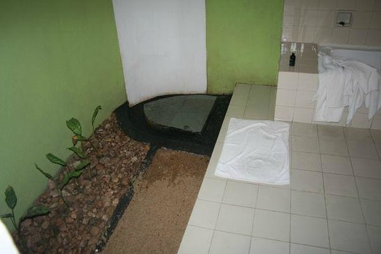 Deer Park Hotel : Indoor garden in shower room!