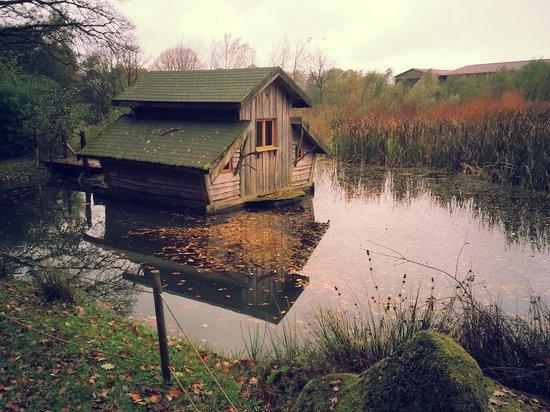 Cabane Jardin Vosges
