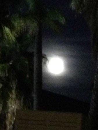 PortAventura Hotel Caribe : Terrasse au clair de lune