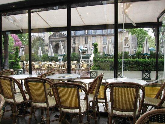 Cafe Les Deux Magots: newcat68