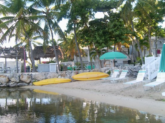 Amoray Dive Resort: Beach at Amoray