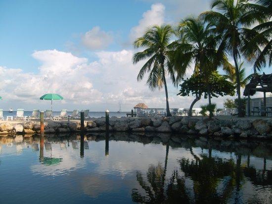 Amoray Dive Resort