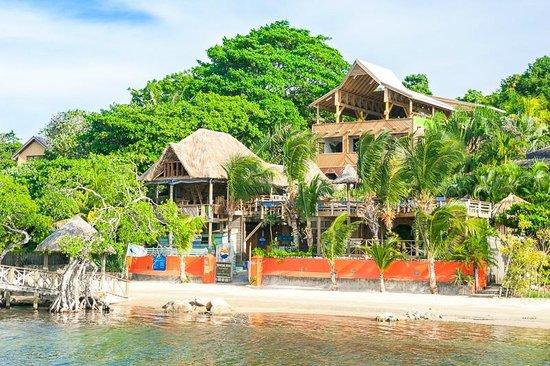 The Sunken Fish Tree Top Ocean View Bar & Restaurant: the lodge