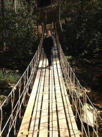 Cherokee Mountain Cabins: Rope Bridge across creek