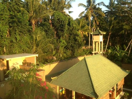 Villa Selat: The forest in front of the resort