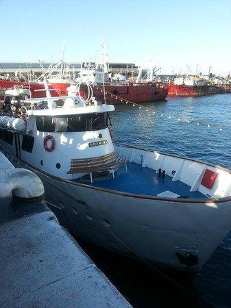 Crucero Anamora: Barco