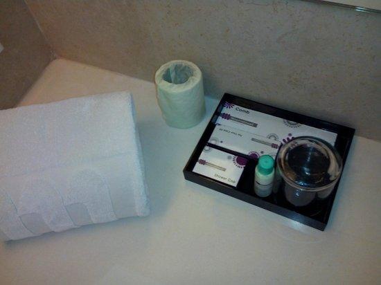 Hotel Minerva Grand: The Bathroom