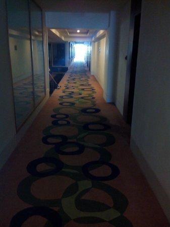 Hotel Minerva Grand: Passage