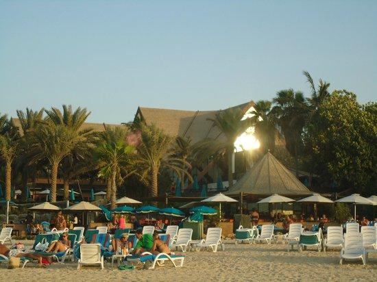 JA Palm Tree Court: vue depuis la mer