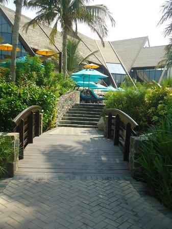 JA Palm Tree Court: acces piscine