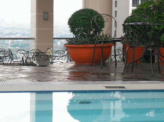 City Garden Hotel Makati: Rooftop Pool