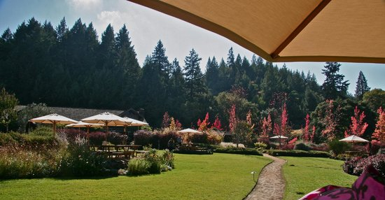 Beau Wine Tours - Napa Valley : Picnic at Lambert Bridge Winery