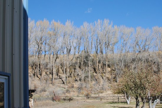 Mountain Spirit Winery : View in the fall