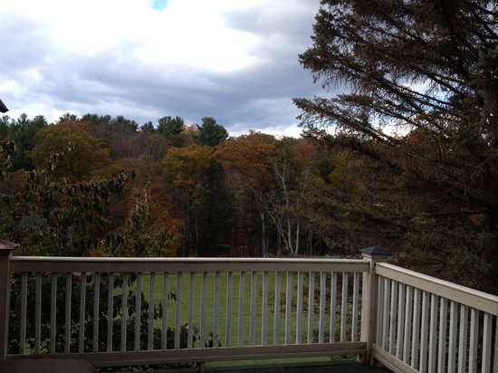 Inn at Lake Joseph : Our deck view. Blue Jay Room