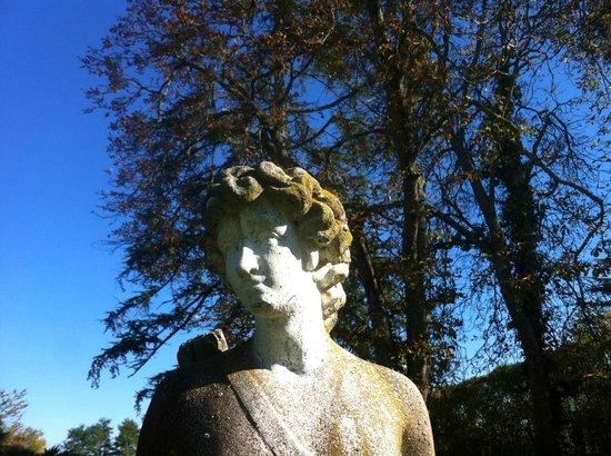 Domaine de Fompeyre : Jolie tête dans une belle lumière