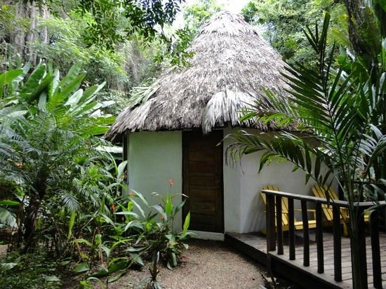 Macaw Bank Jungle Lodge : I space of tranquility