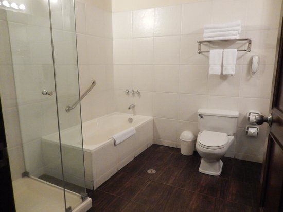 Casa Andina Premium Arequipa: Bathroom off suite