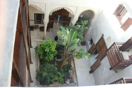 Riad El Maati : View of interior from rooftop