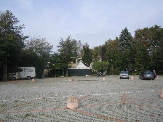 Villa Regina: Park