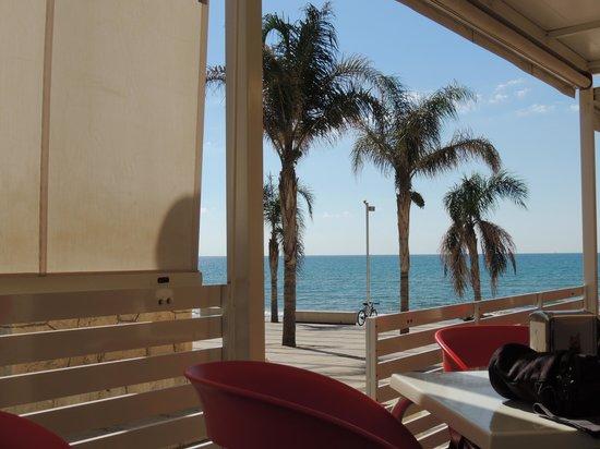 Caffe delle Rose : veranda 2