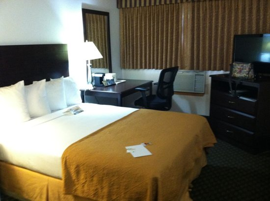 Quality Inn & Suites Seattle: Room upon check-in