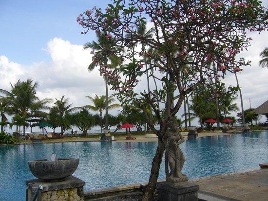Patra Jasa Bali Resort & Villas: piscine