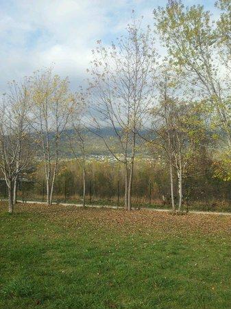Camping Les Iles: campeggio vista dal camper