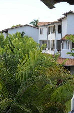 Sugar Cane Club Hotel & Spa: Sugar Cane Resort