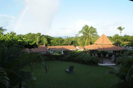 Sugar Cane Club Hotel & Spa: Sugar cane view to the sea