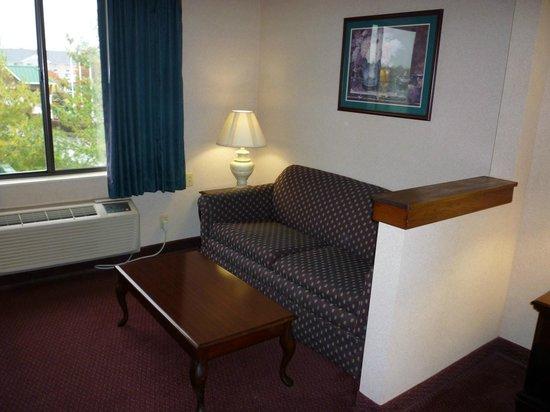 Comfort Suites - Georgetown: Comfy sofa